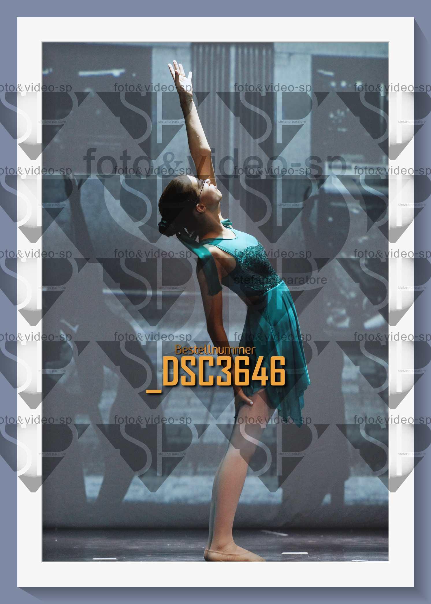 DSC3646