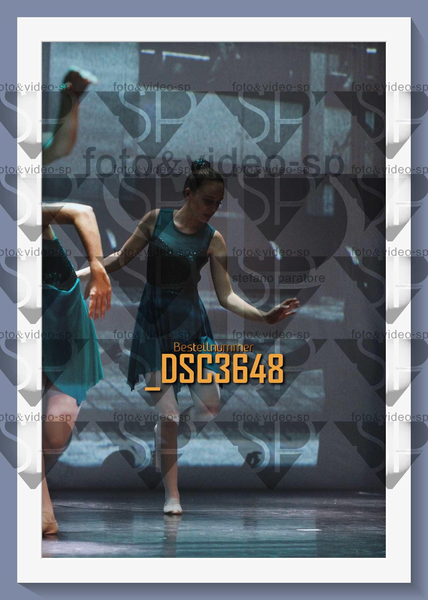 DSC3648