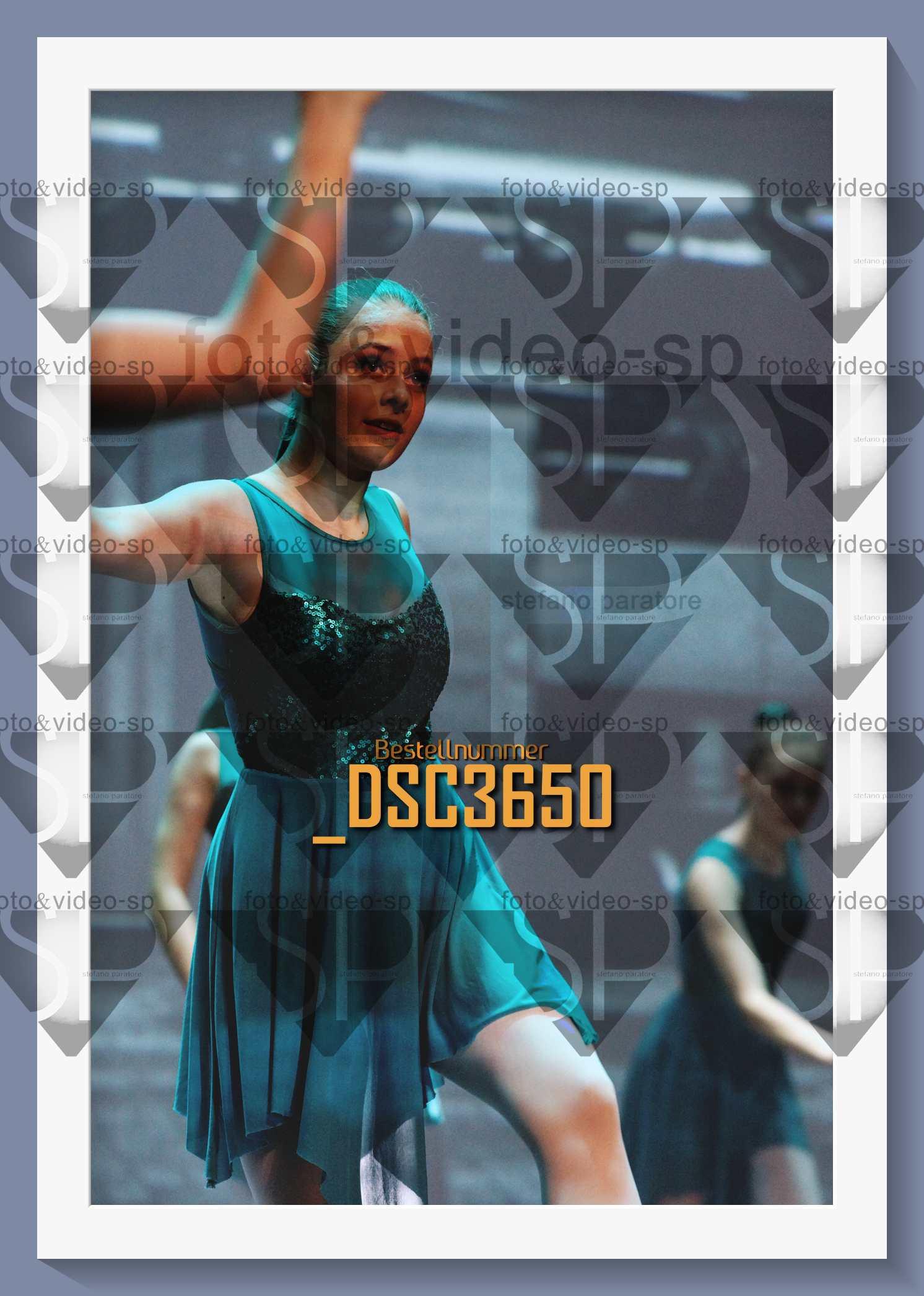 DSC3650