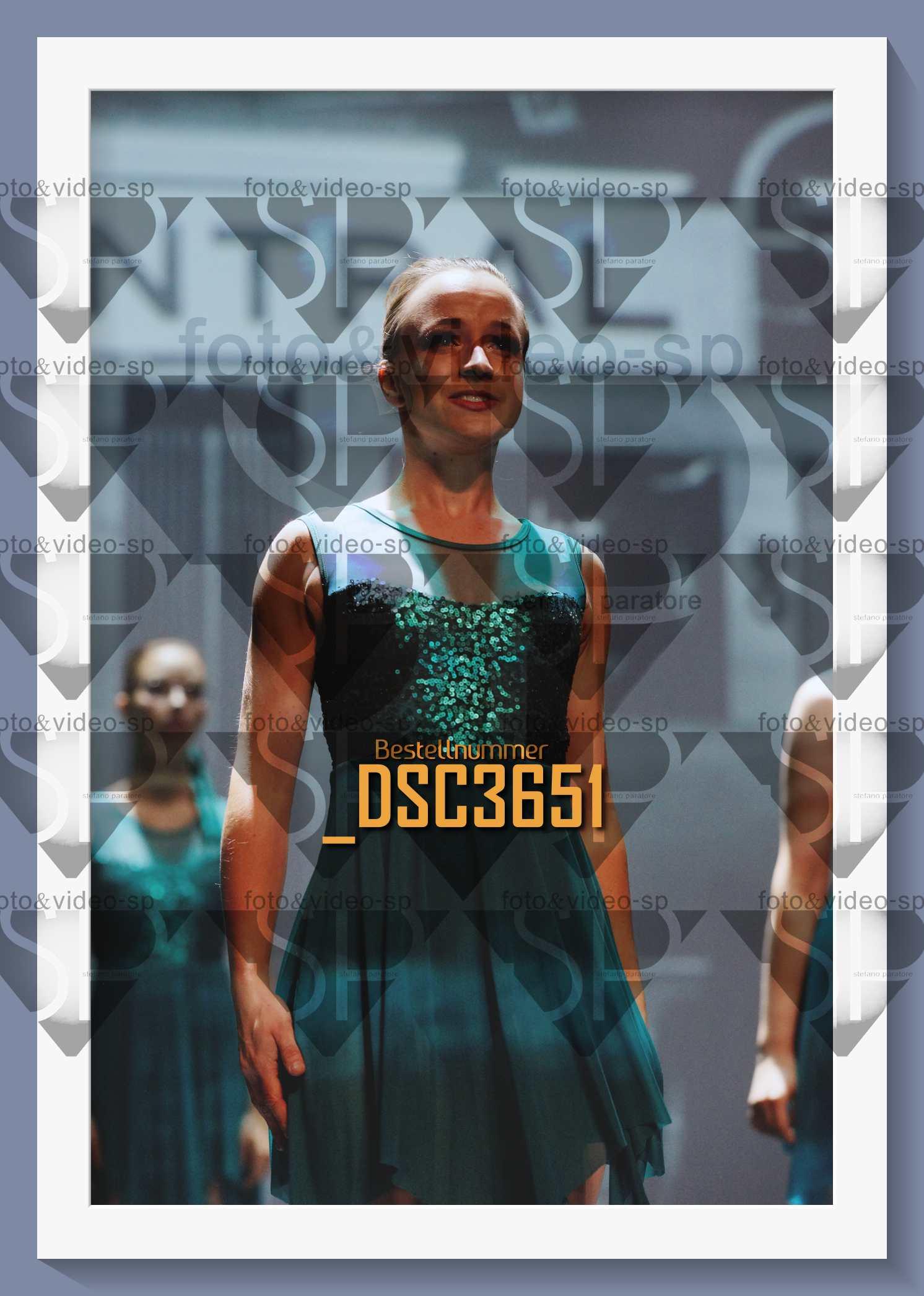 DSC3651