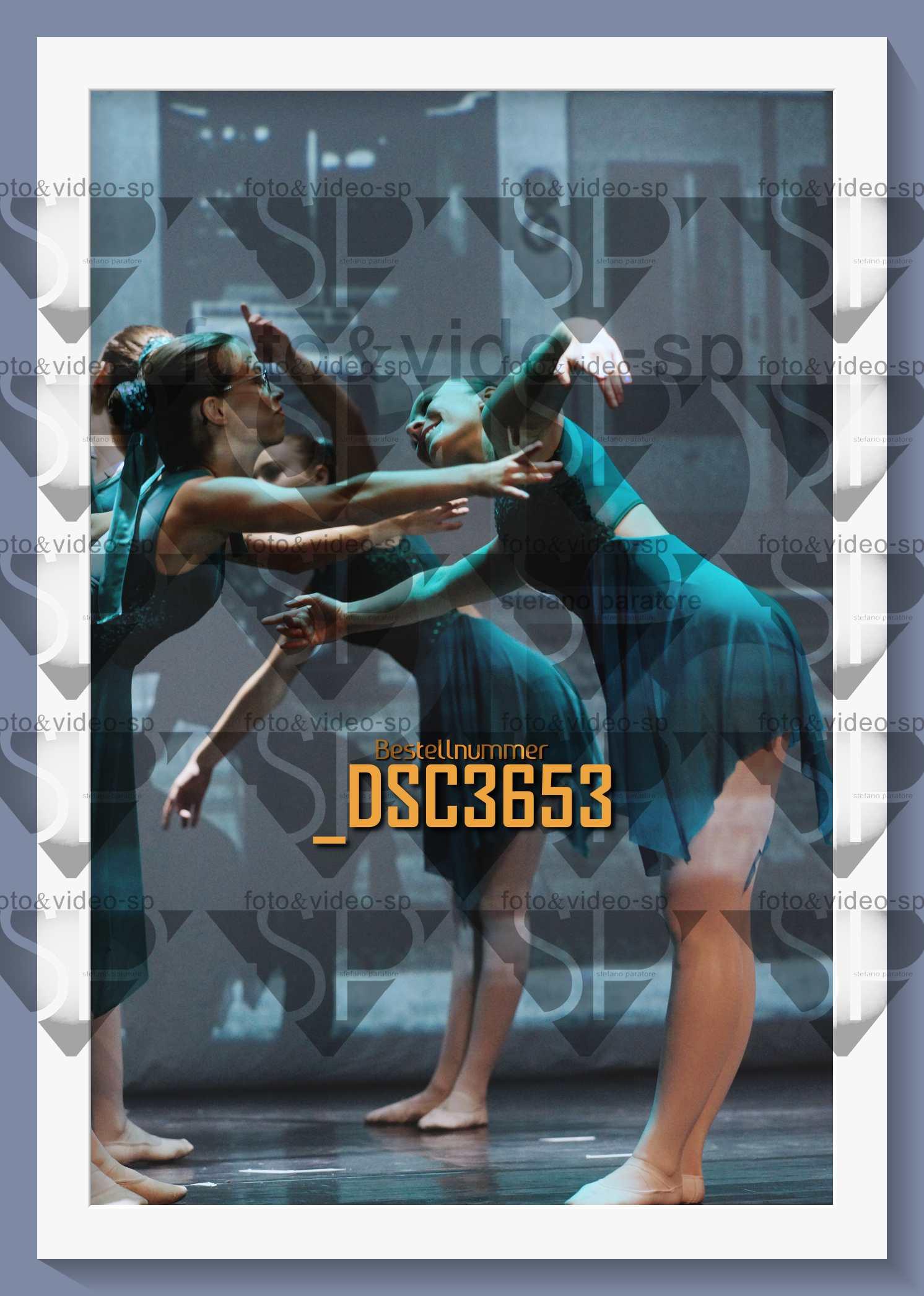 DSC3653