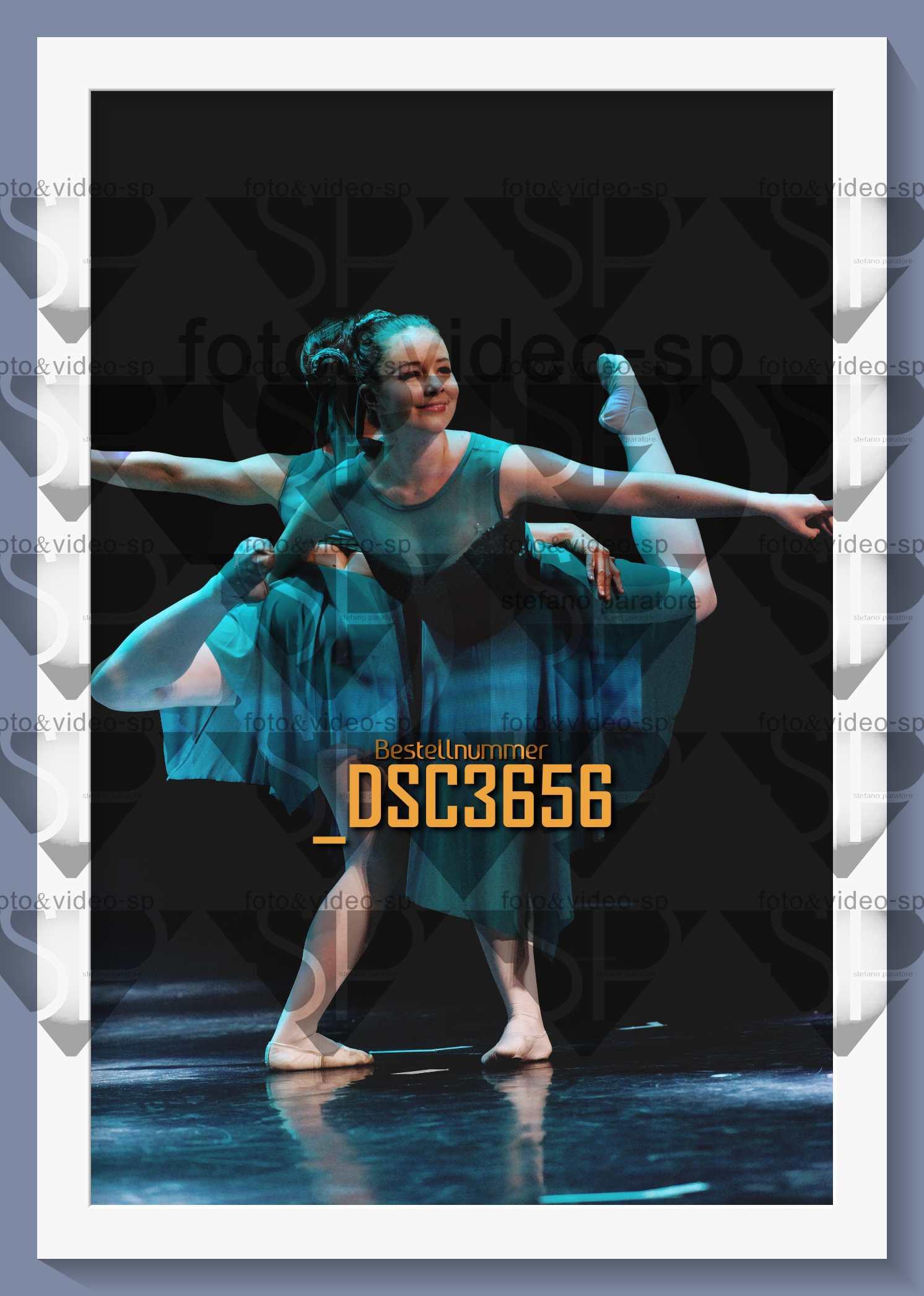 DSC3656