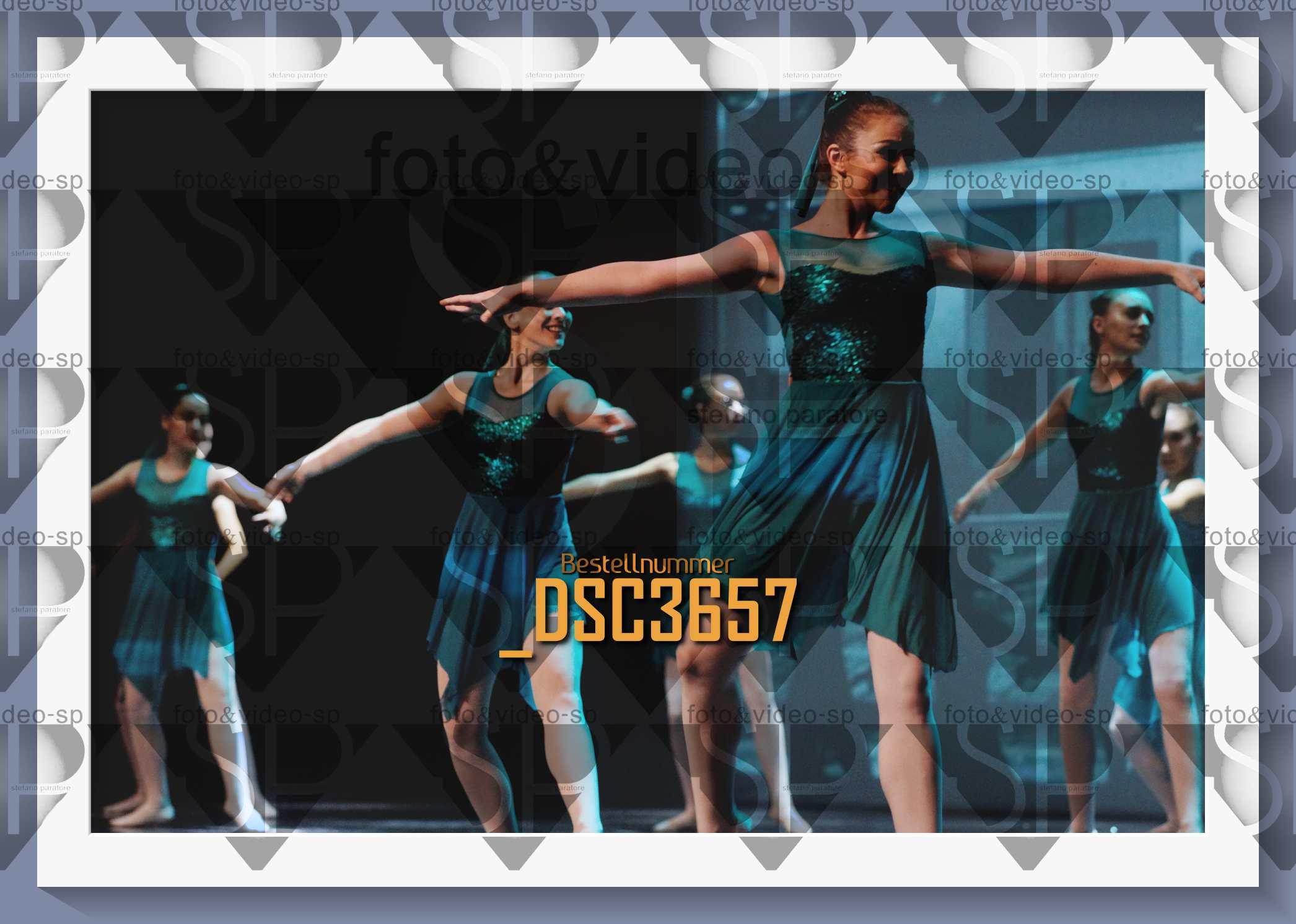 DSC3657