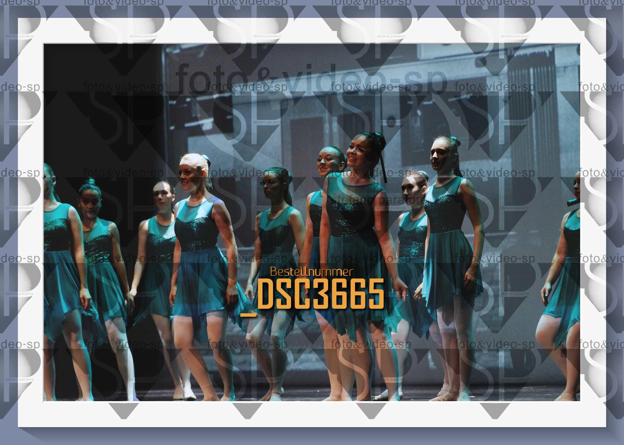 DSC3665