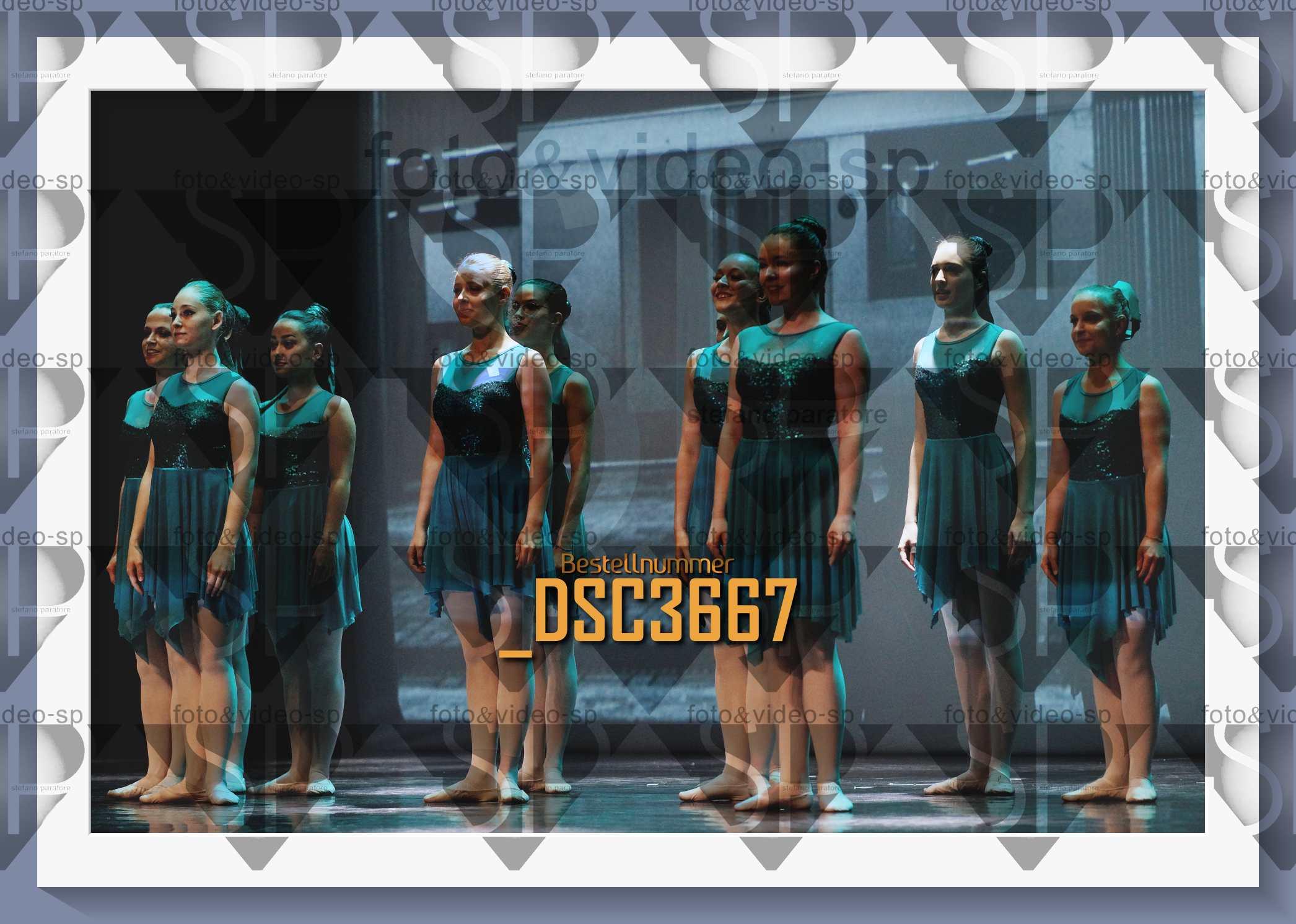 DSC3667