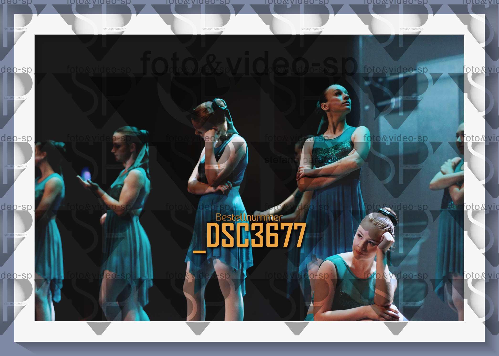 DSC3677