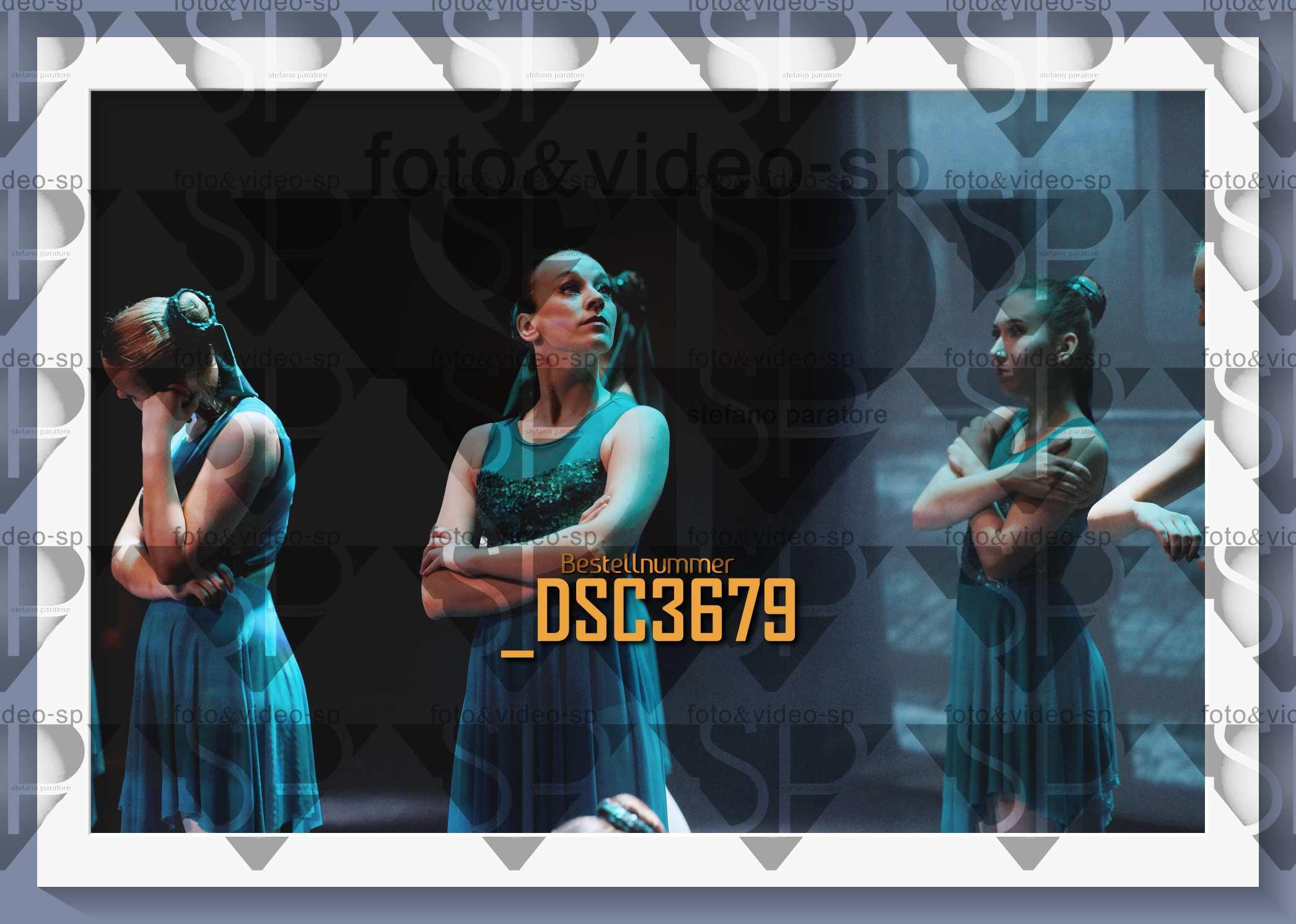 DSC3679