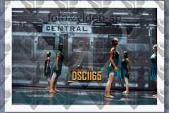 DSC1165