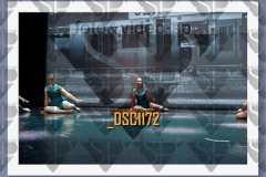 DSC1172