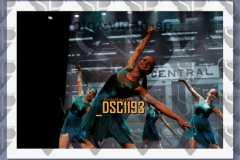 DSC1193