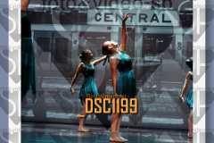 DSC1199