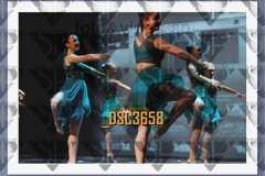 DSC3658