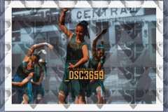 DSC3659