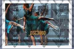 DSC3660