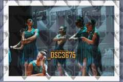 DSC3675
