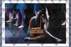 DSC3681