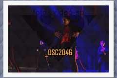 DSC2046