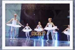 DSC1527