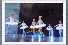 DSC1528