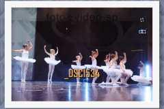 DSC1534