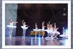 DSC1536