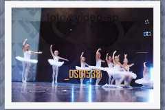 DSC1538
