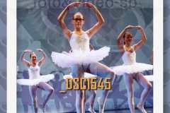 DSC1545