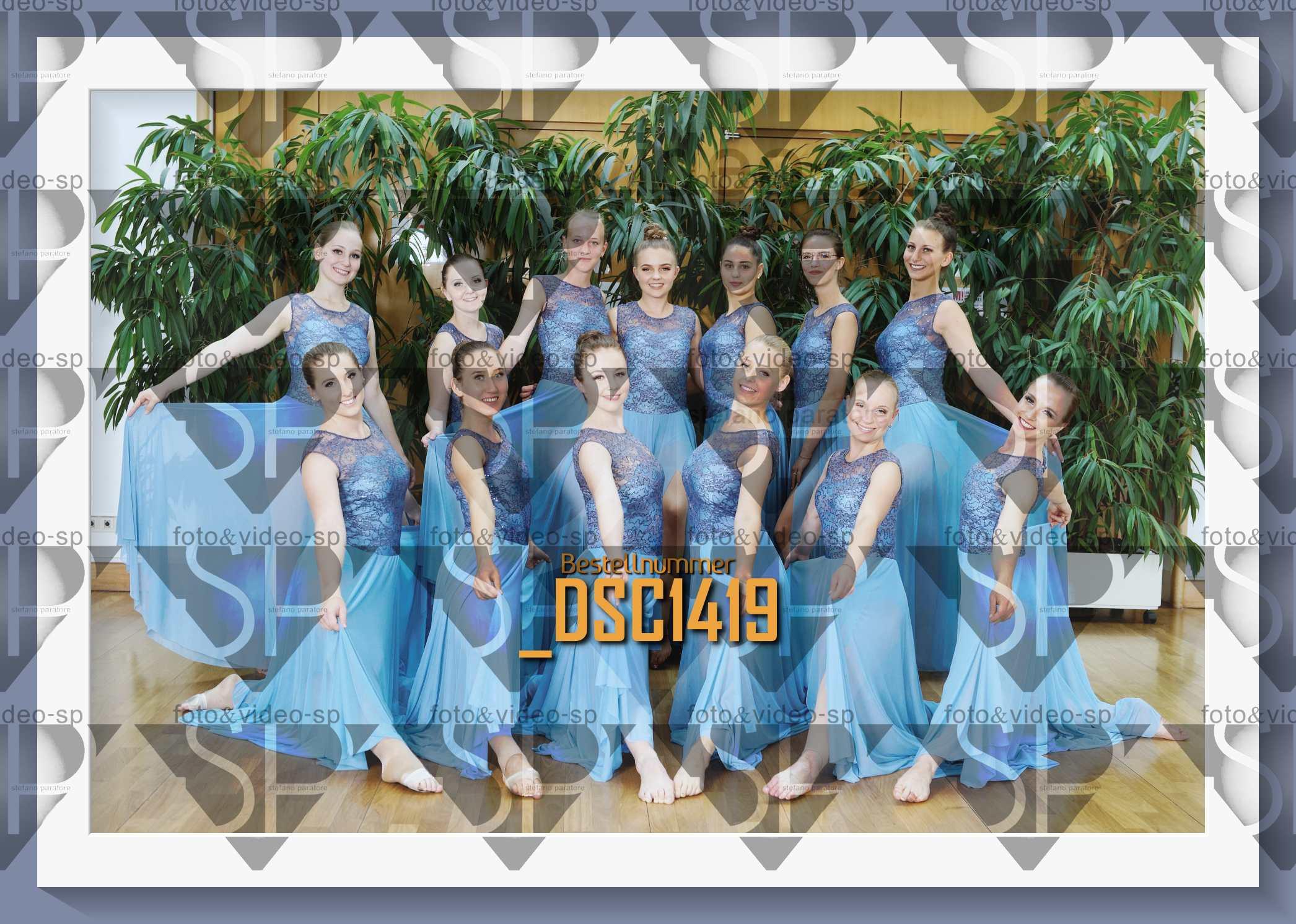 DSC1419