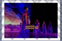 DSC0240