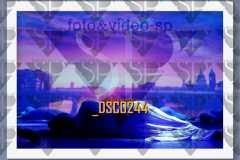 DSC0244