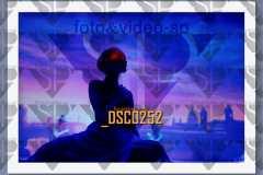 DSC0252
