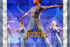 DSC0265