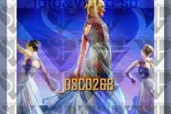 DSC0268
