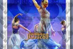 DSC0269