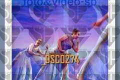 DSC0274