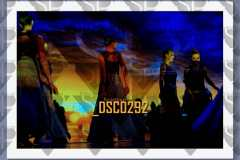 DSC0292